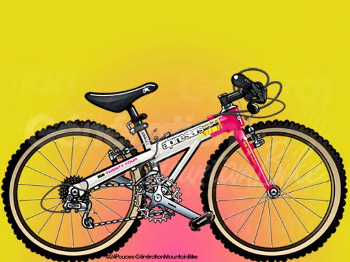 1991 – Alpinestars T24